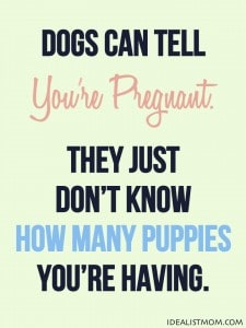 Dogs Can Tell You're Pregnant