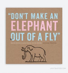 Don't Make an Elephant out of a Fly