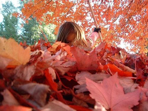If you're raking leaves, then rake leaves.