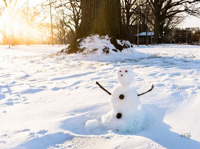 When life gives you a snowstorm, be grateful for the snowman.